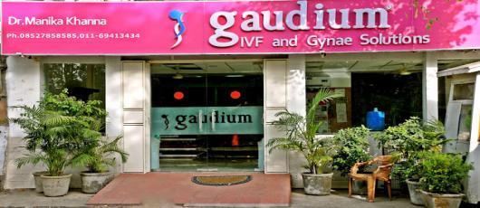 Gaudium IVF Gynae Solutions New Delhi